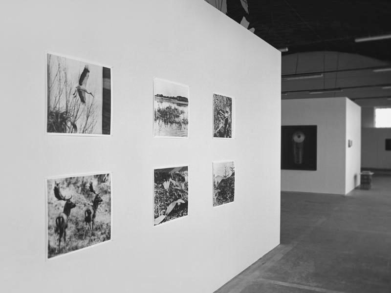 installation view, Making Worlds, Emil Filla Gallery, Ústí n. L, CZ, 2010